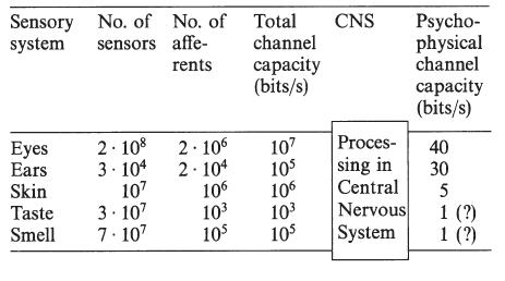 Zimmermans tabell över hur mycket information olika sinnen kan överföra per sekund.