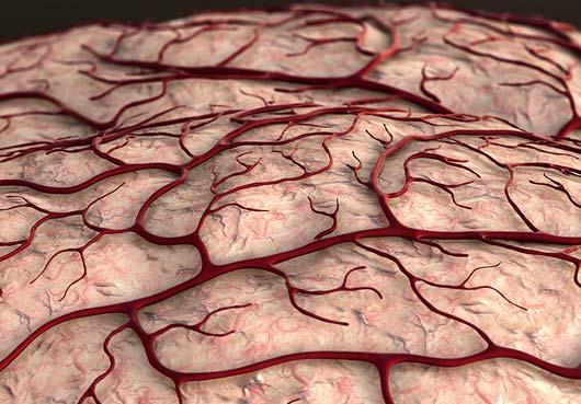Öka blodflödet till hjärnan genom att tugga.
