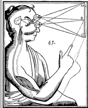 The mouth is rich in information. Descartes believed that the pituitary gland was the part of the brain where the self lived.